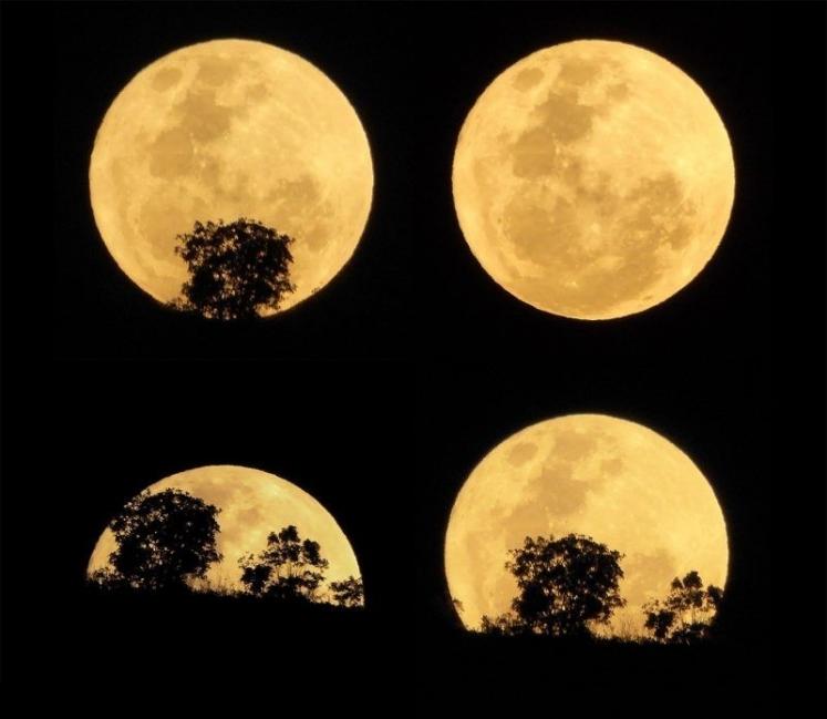 Superluna es la coincidencia de la luna llena o luna nueva con el máximo acercamiento de ésta a la tierra