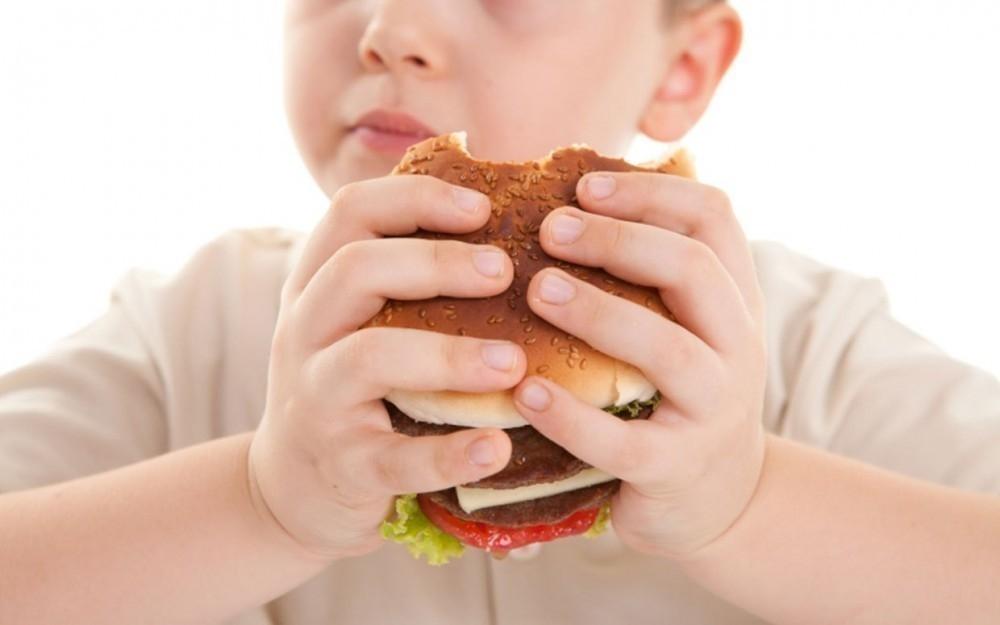 ley chile etiquetado de alimentos
