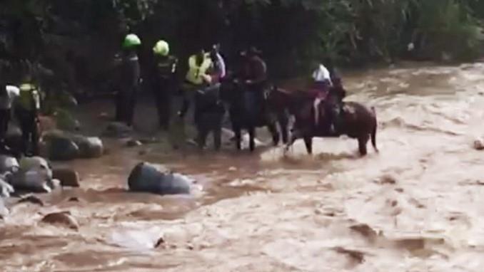 El rescate lo hicieron a caballo