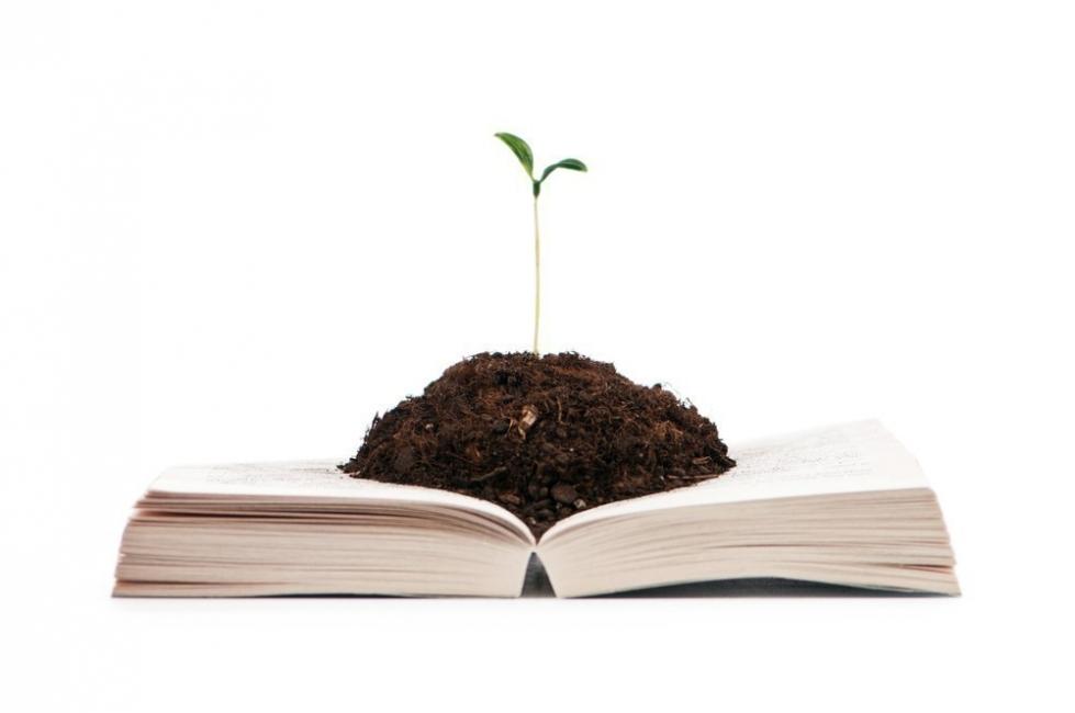 biblioteca permacultura- huertas, alimentación, sustentabilidad- libros