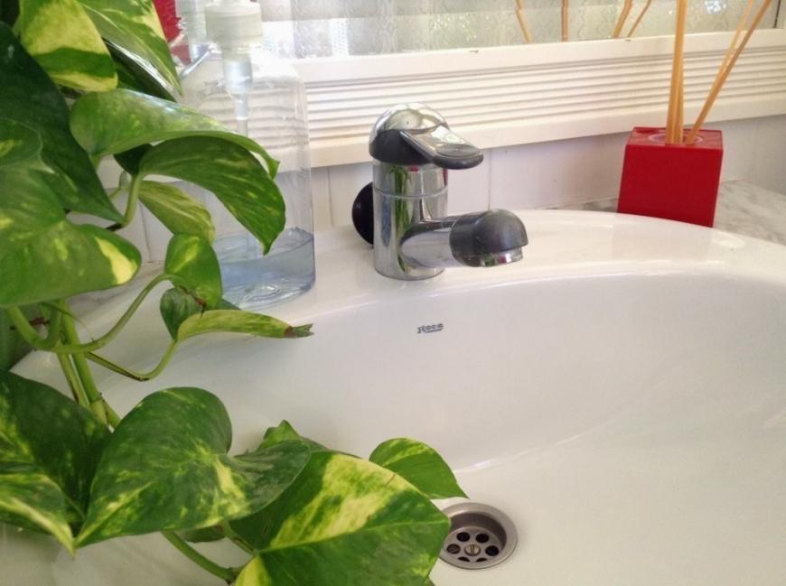 quitar el mal olor de las tuberías de manera natural-
