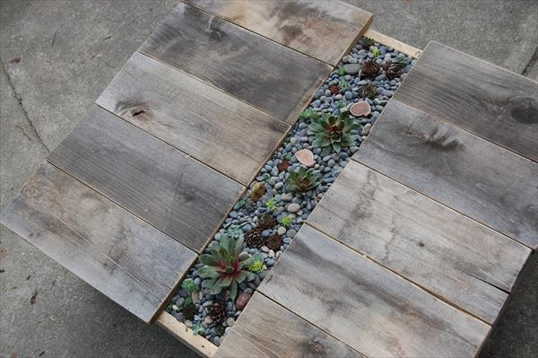 pallet-succulent-table-1