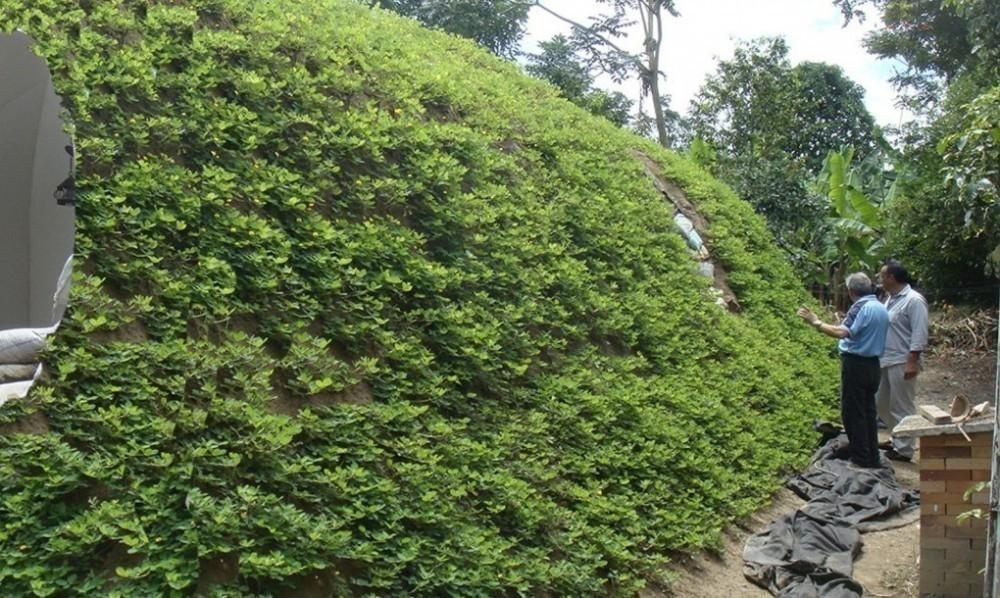 techo verde en casa hobbit