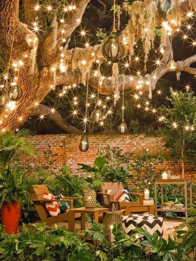 Decorar con luces en cadena - árboles