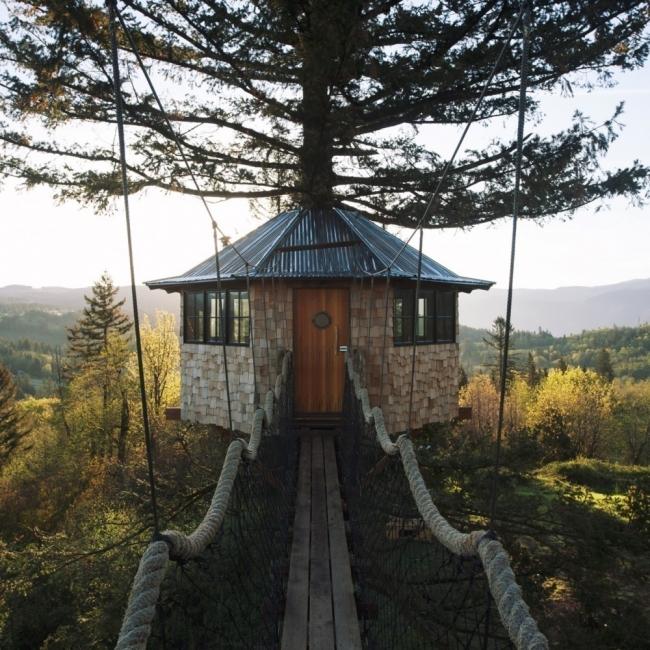 The Cinder Cone- casa del árbol- foster