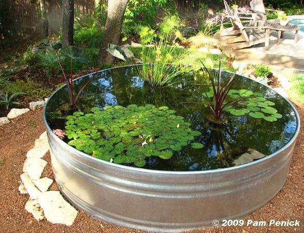 Stock-tank-container-pond-1