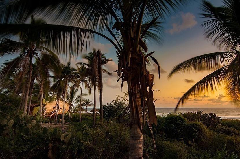 Una paradisíaca habitación de bambú para descansar frente a las playas de México