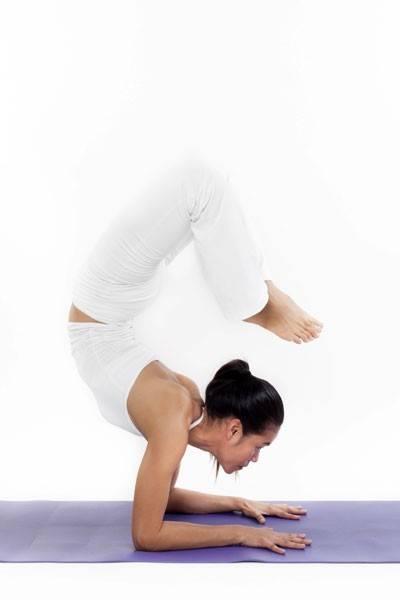 Scorpion-pose-white
