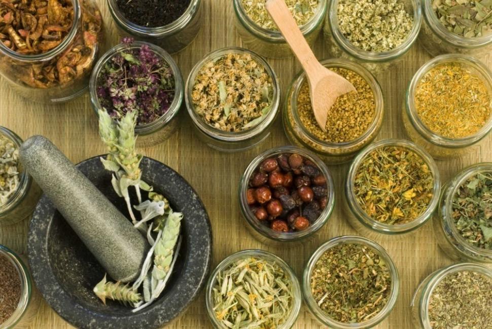 5 plantas shamánicas que sanan tu cuerpo- libro hierbas y plantas curativas - plantas medicinales