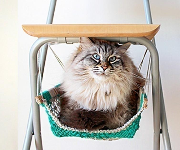 silla para gato