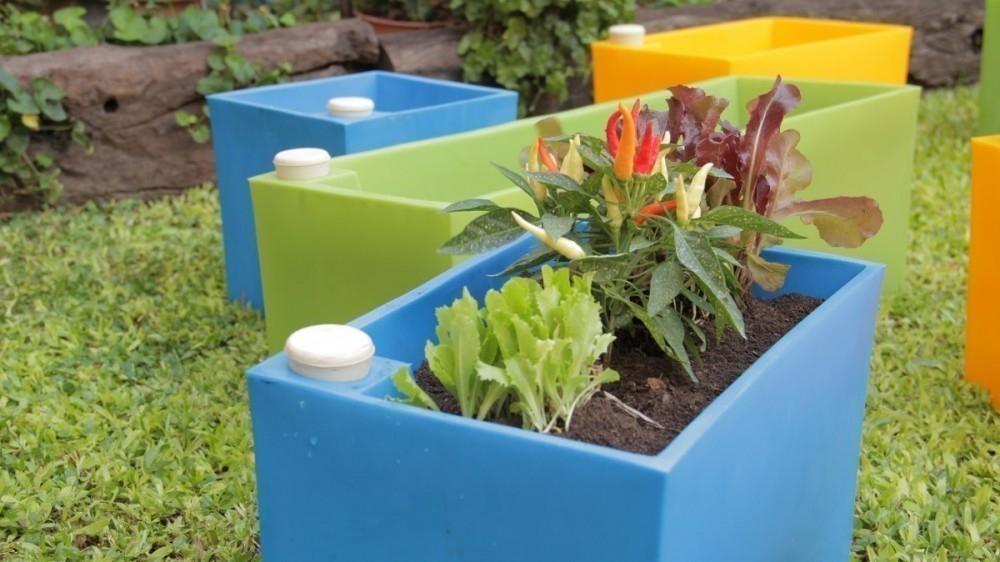 Mantener húmedas tus plantas durante las vacaciones -macetas con auto-riego