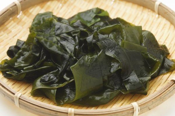 seaweed1-1024x682