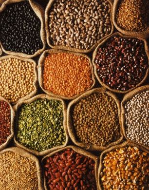 semillas-preciosas