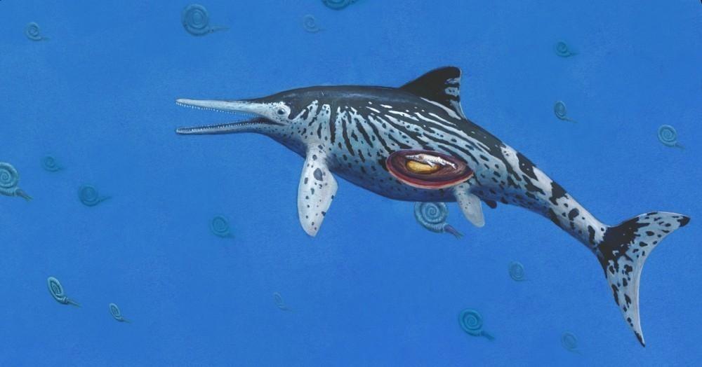 Semejanza de Ichthyosaurus descubierta