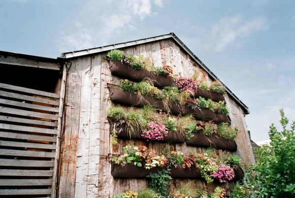 54eb5c7f16e17_-_rden-on-building-wall-how-to-plant-vertical-garden-0412-xln