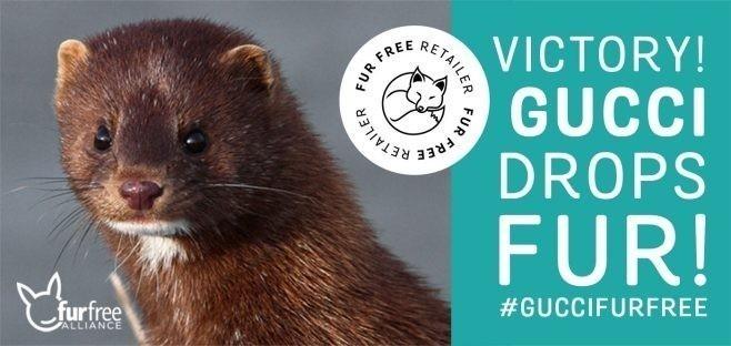 Campaña de Fur Free
