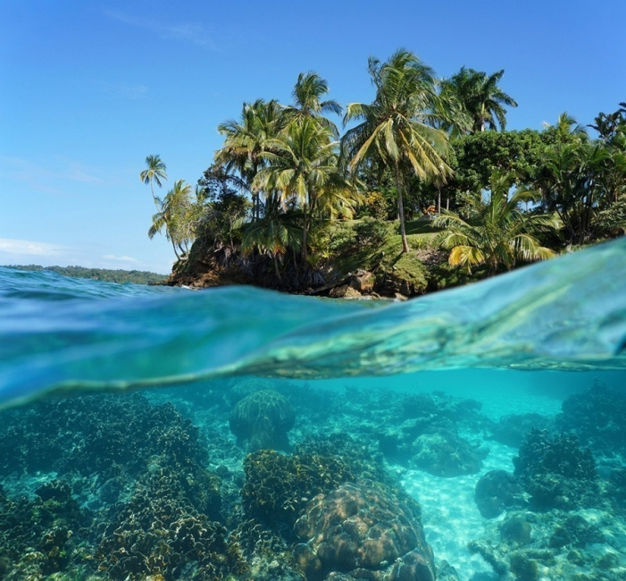 ola- caribe- zumbido-oscilaciones