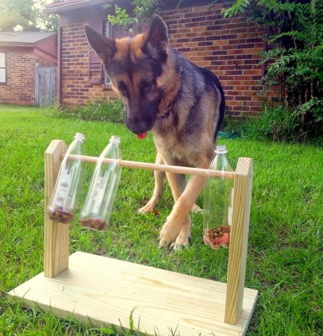 Comedero juguete para perros - perros