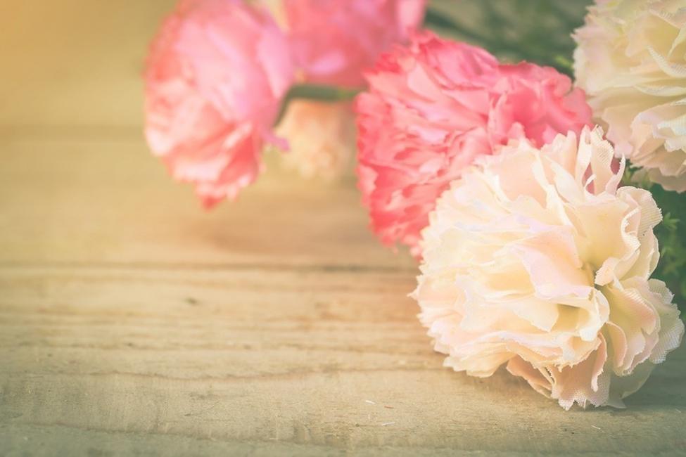 Flores y personalidad- clavel