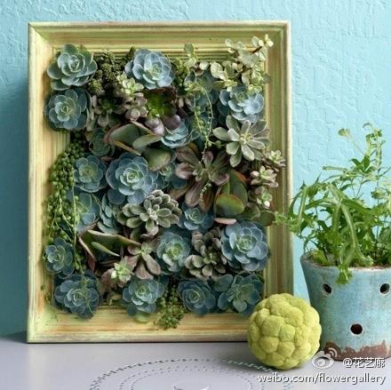 un-pequeno-jardin-vertical-de-interior-09