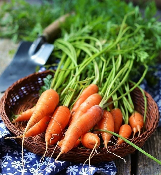 jabón casero de miel y zanahoria - propiedades cosméticas naturales
