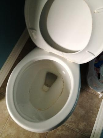 toilet-before