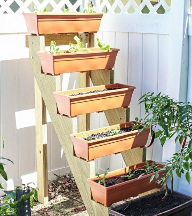 jardín vertical escalonado procedimiento