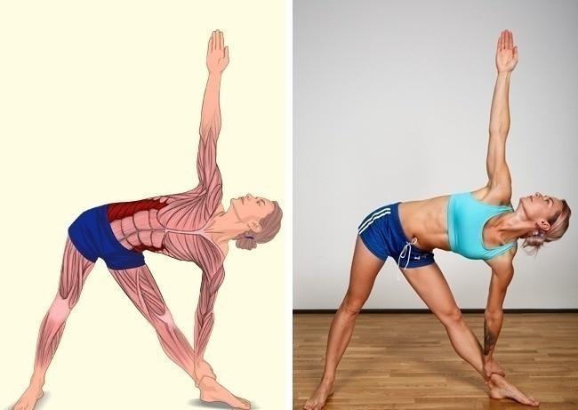 ejercicios estiramiento