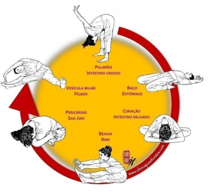 secuencia de ejercicios y estiramientos meridianos