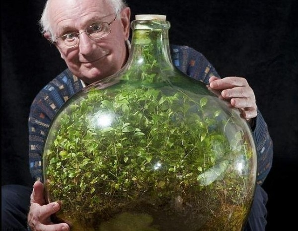 jardin-botella--644x500