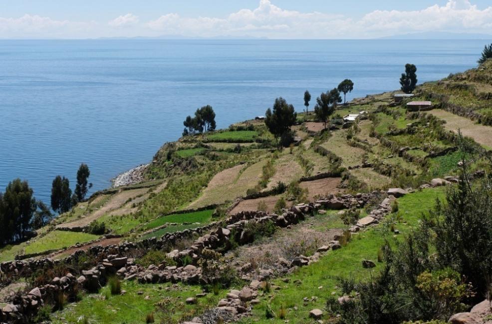 Perú - Lago Titicaca