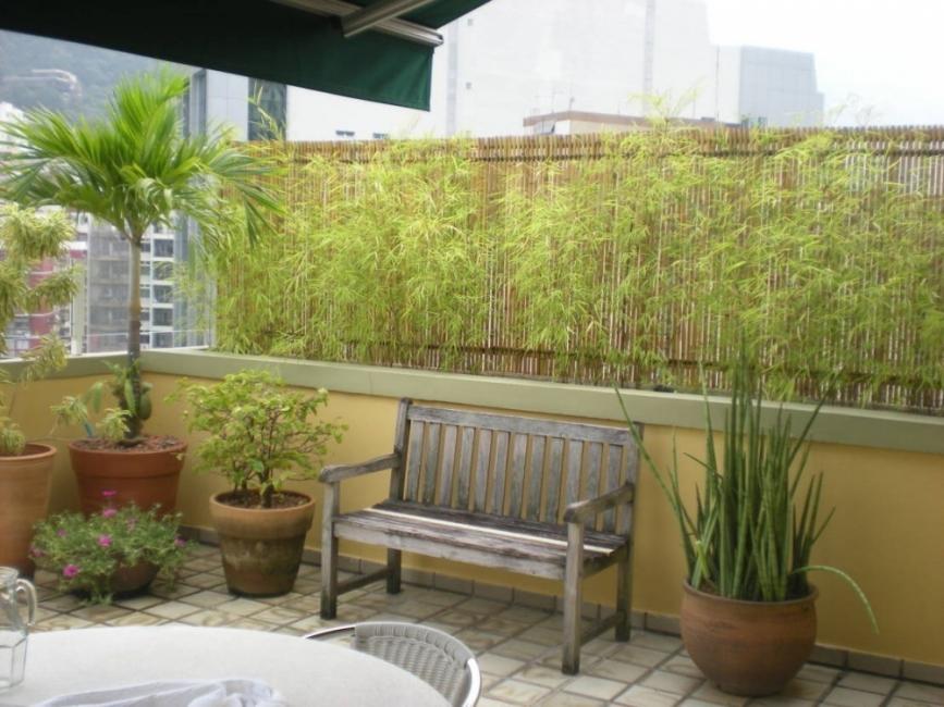 Ideas para crear divisiones verdes en tu jardín -bambú pared