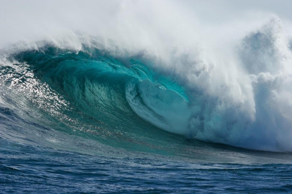 Un hombre sobrevivió 28 horas nadando entre tiburones y medusas- historia