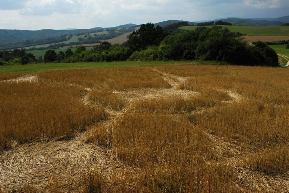 10 misterios que la ciencia nunca pudo resolver - círculos en los cultivos
