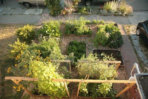 veggiegarden23