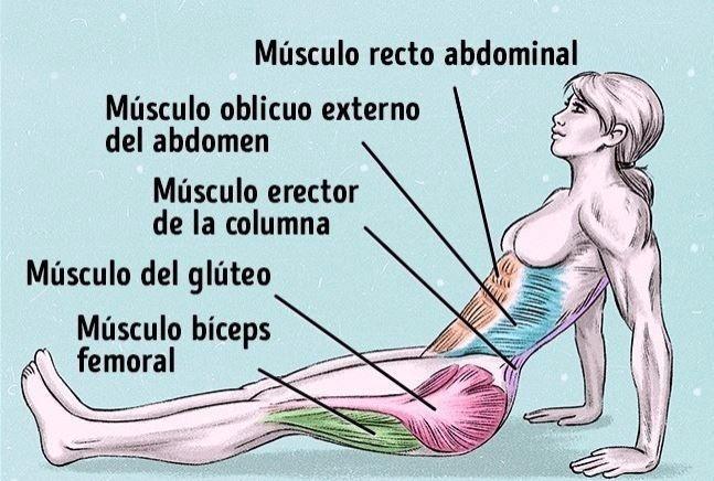 Ejercicios para quemar grasa abdominal y espalda