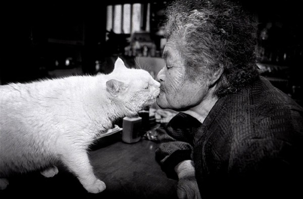 grandmother-and-cat-miyoko-ihara-fukumaru-9