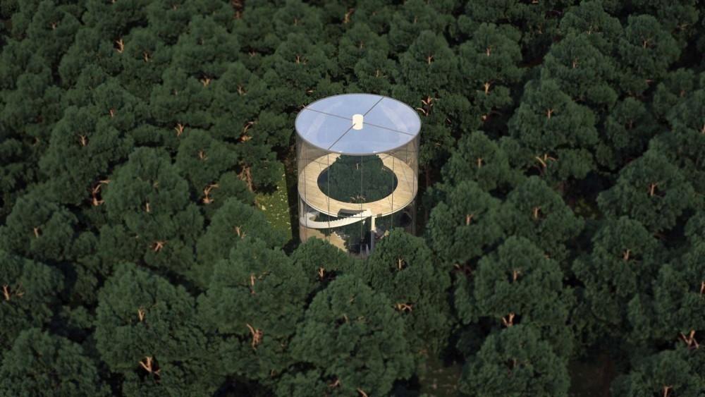 casa del árbol de lujo- paisaje