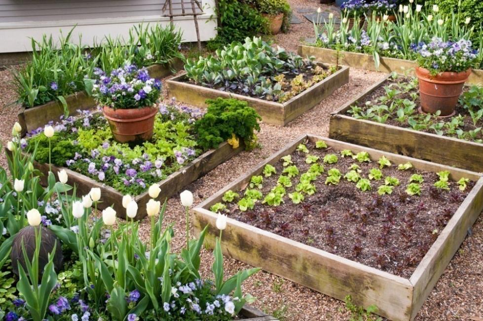 construcción de bancales elevados de jardinería- ideas