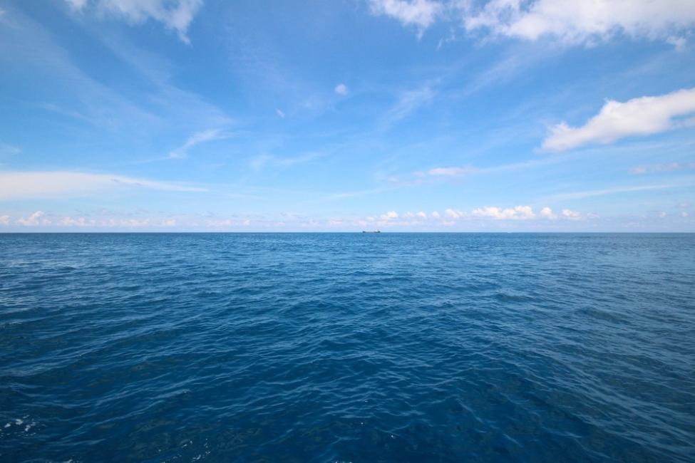 test psicológico: mar