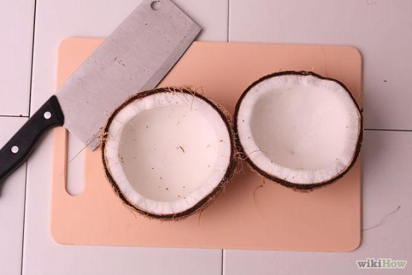 670px-Make-Coconut-Milk-Step-8