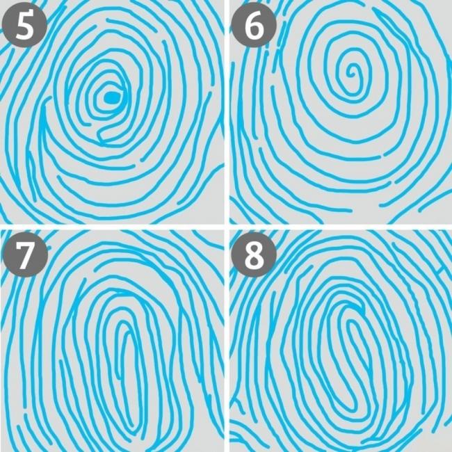 huellas dactilares y personalidad- interpretación de patrones