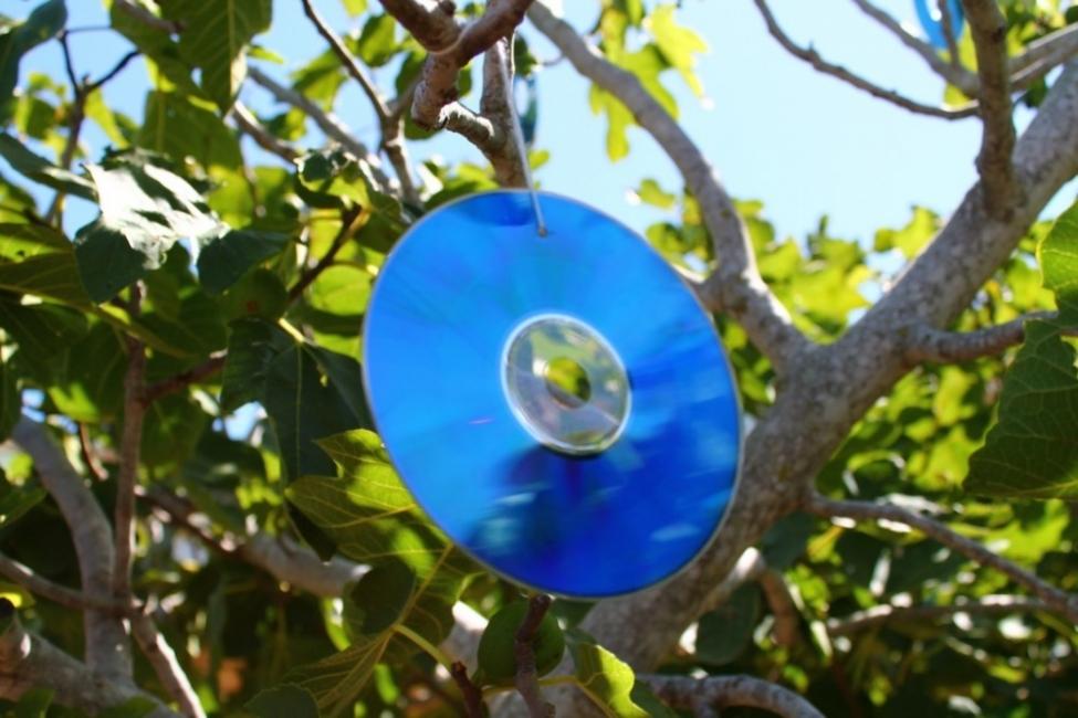 CDs reutilizados - Espantapájaros