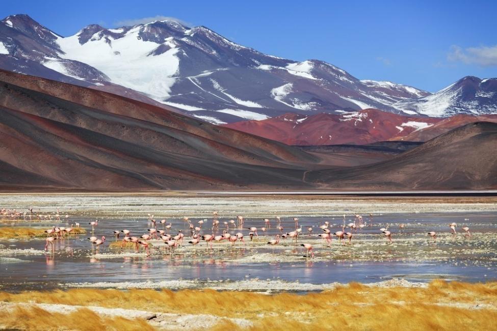7. Laguna negra de Catamarca - Argentina