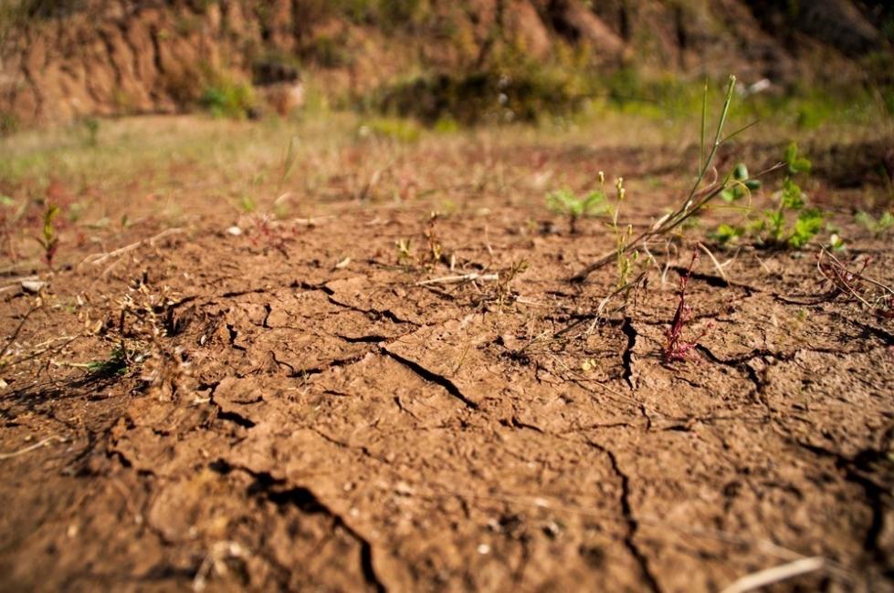 suelo terreno