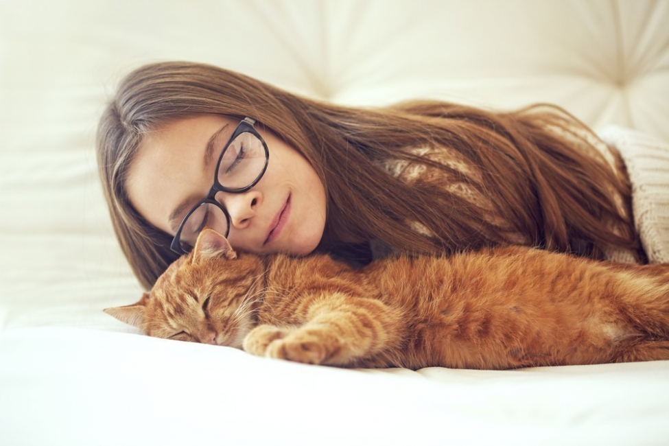 beneficios de tener un gato para la salud  - relajarte
