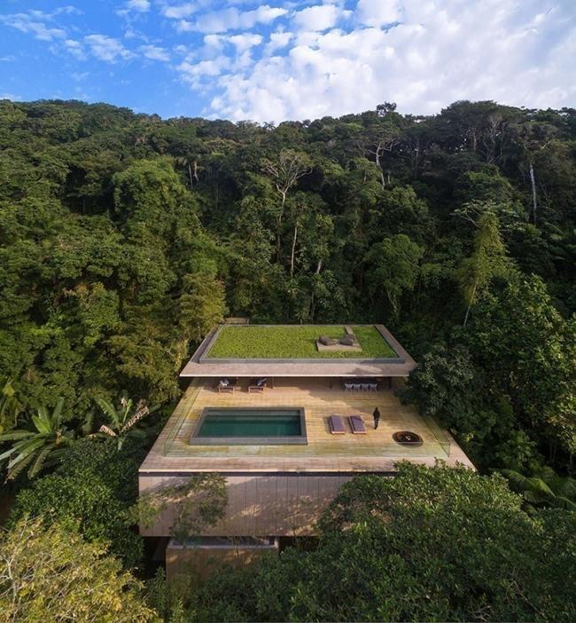 la casa en la jungla