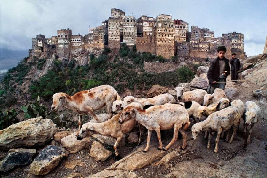 yemen-10052nf-1