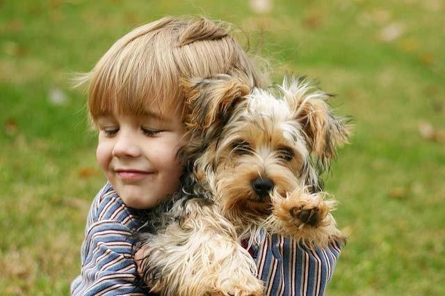 Tener mascota resulta beneficioso para los niños