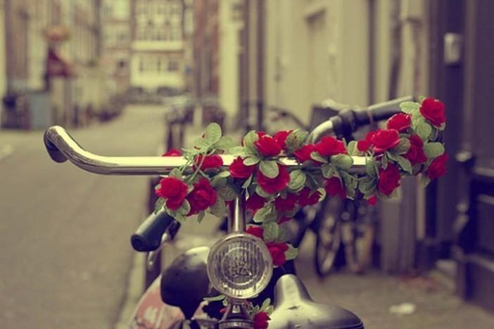 Amor regalo